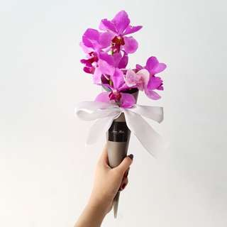Orchid Cone Bouquet