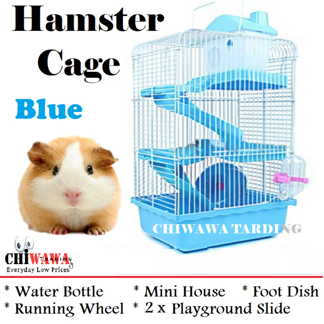 Hamster free x