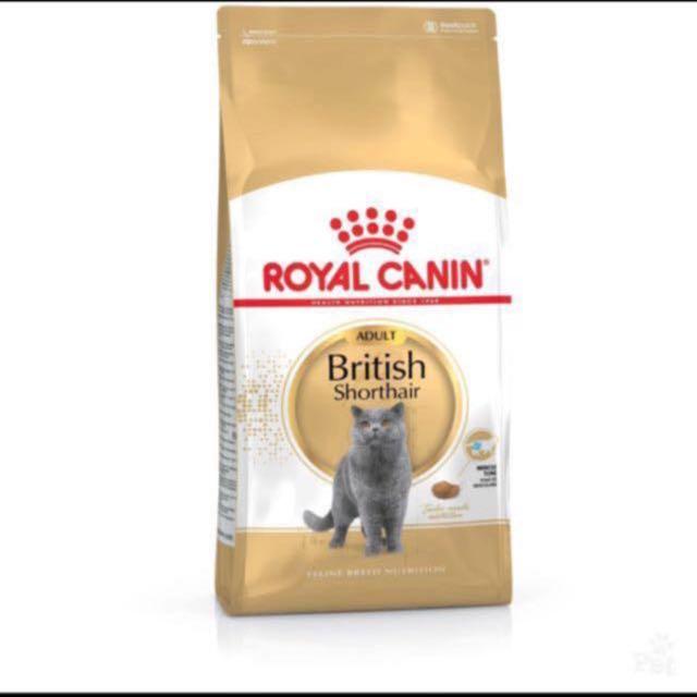 Royal Canin British Shorthair Adult 4kg Cat Food