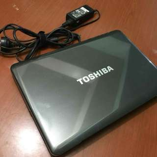 Laptops Toshiba