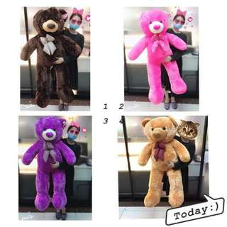 FEB 18 TEDDY BEAR (SSY)