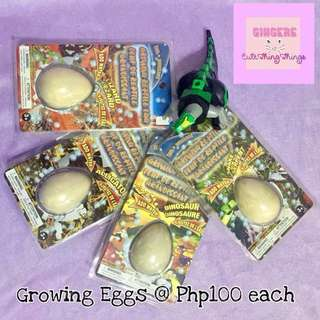 Hatching Reptile Eggs