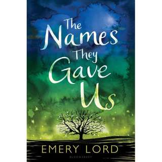 The Names They Gave Us (Emery Lord)