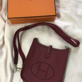 Hermes mini evelyn