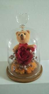 Preserved rose for your love one