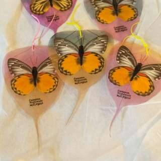 Real Laminated  Butterfly Bookmarks