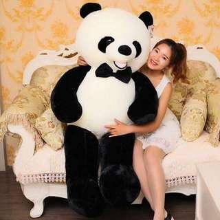 FEB 18 PANDA BEAR (AC)