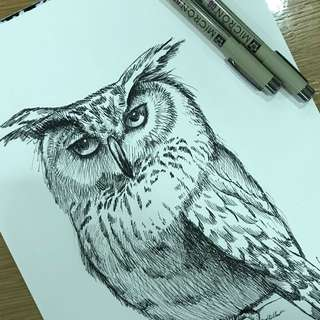 For sharing , owl in ink