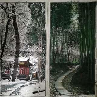中國杭州風景雪景/雲棲竹陰