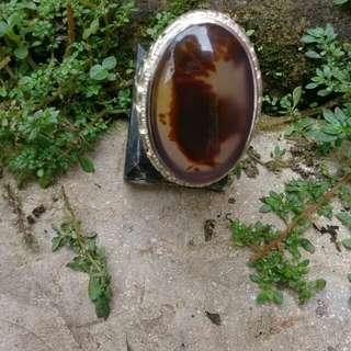 Mosh agate dendrit cristal