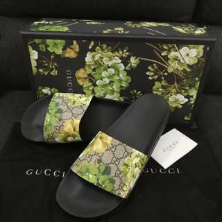 Authentic gucci limited edition slipper