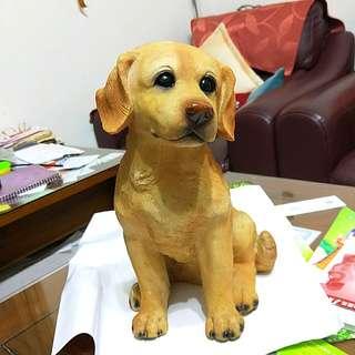 可魯黃金獵犬