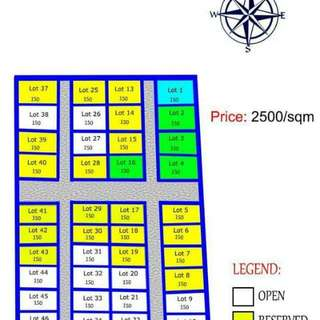 150sqm Residential Lot For Sale In Loma Amadeo Cavite5