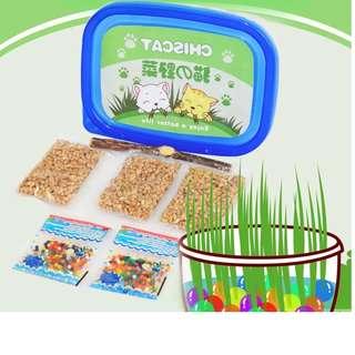 Organic Cat Grass Seeds Package