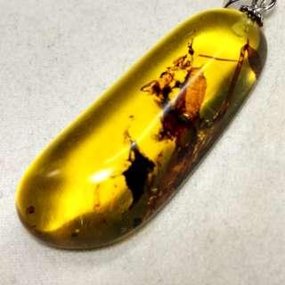🚚 有機寶石天然金珀植物珀項墜 墜頭925銀