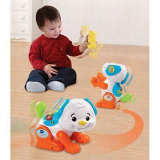 Vtech Shake and Sound Learning pup