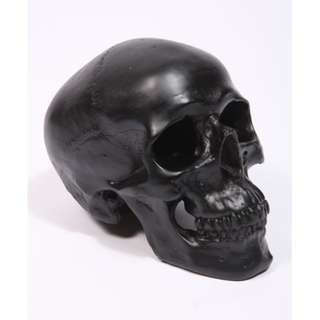 Urban Outfitters (UK) Black Skull Money Bank ( Piggy Bank )