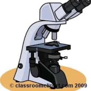 MEDICAL PROCESS TECHNICIAN (UP TO $2200, PAYA LEBAR, PIONEER BATCH!)