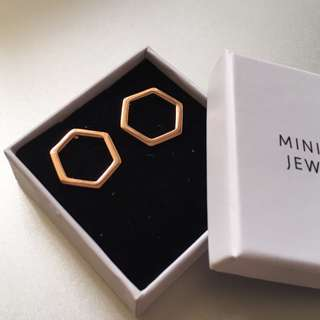 Rose Gold Minimalist Hexagon Earrings