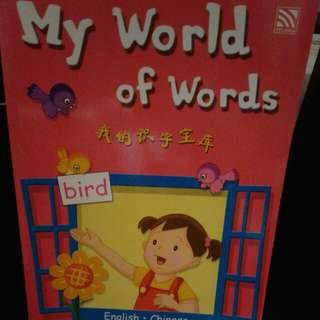BN My World Of Words Chinese-rnglish
