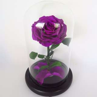 Preserved Flower - Glass Dome - The Enchanted Rose (Dark Violet)  | Valentine's Day | Birthday Present | Gift Box | Rose | Wedding | BNIB | 5% OFF