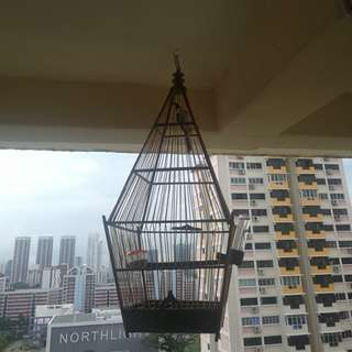 Only sell Jambul cage