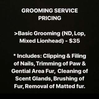 Rabbit Grooming (Housecall)