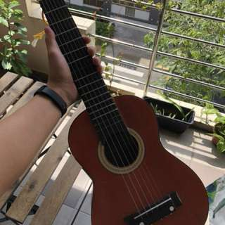 Ukulele, mini guitar