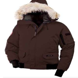 Men's brown Canada goose chilliwack Bomber
