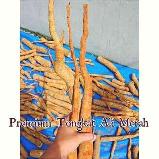 Raw Tongkat Ali