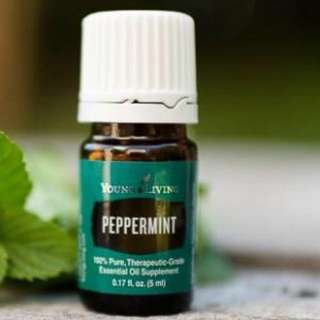 [Nego] Young Living Peppermint Essential Oil