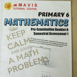 Mavis Maths Primary 6