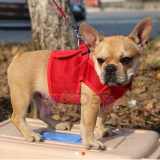 Dog Harness with Leash (Red, Small)
