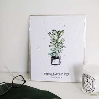 Fiddle Leaf Fig Art Print - Minimalist