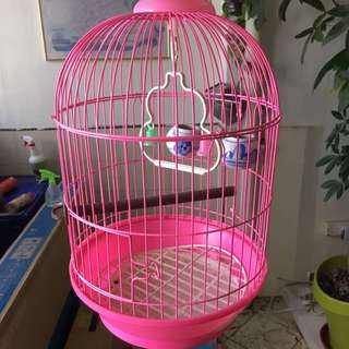 FREE bird cage with two glasses