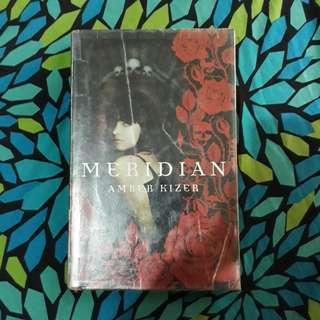 Meridian written by Amber Kizer