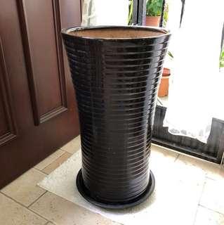 Tall ceramic plant pot