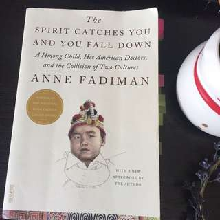 The Spirit Catches You and You Fall Down Anne Fadiman Sociology Journal