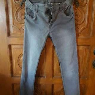 Gray Terranova Pants