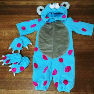 Sully Costume from Monster Inc. movie