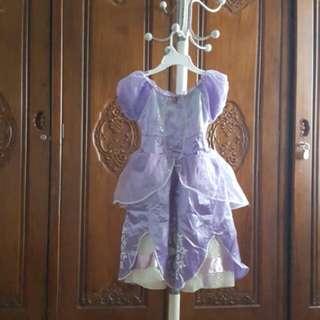Princess Sofia dress