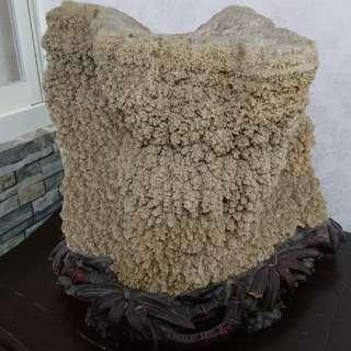 結晶鐘乳石