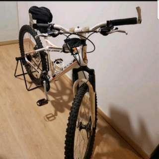 TRADE RALEIGH LAHAR Mountain Bike Bicycle To Escooter
