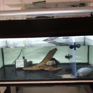 3ft fish tank set
