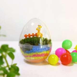 Terrarium Egg (Bulk)