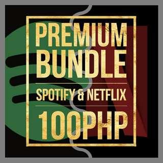 Spotify & Netflix Premium Bundle