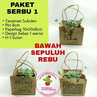 Souvenir Kaktus Sukulen Murah Kemasan Paperbag
