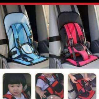 Foldable/Flexible Car Seat