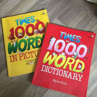 Dictionary in pictures x 2 (not for fussy buyers)