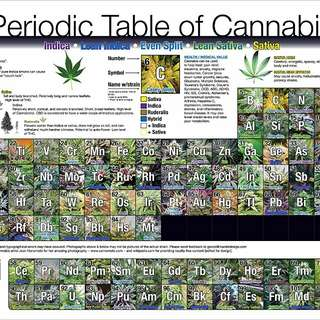 Weed Periodic Table of Cannabis Poster
